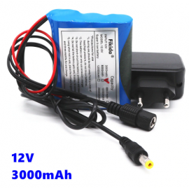12V 3000mAh Li-Ion Battery with charger